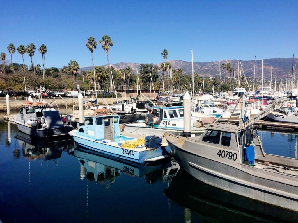 Toxic algae bloom grinds crab industry to a halt for the for Santa barbara fishing