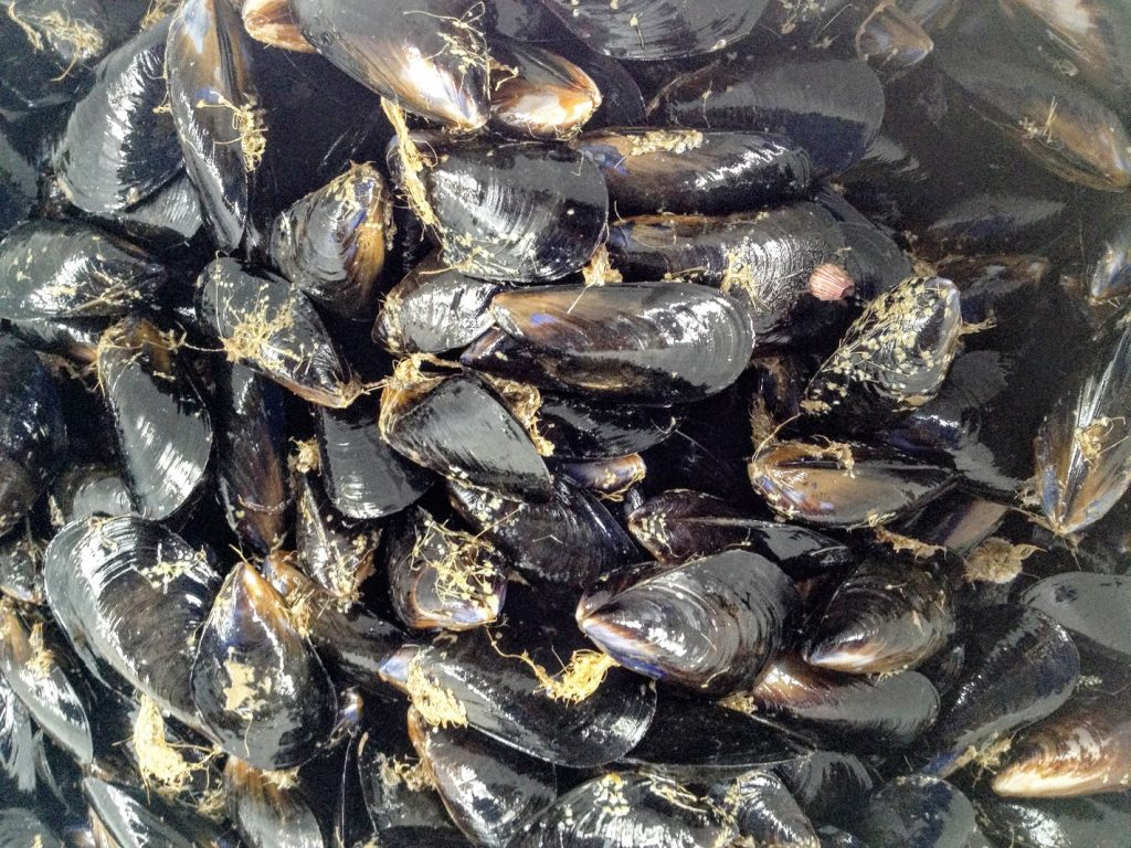how to cook de shelled mussels