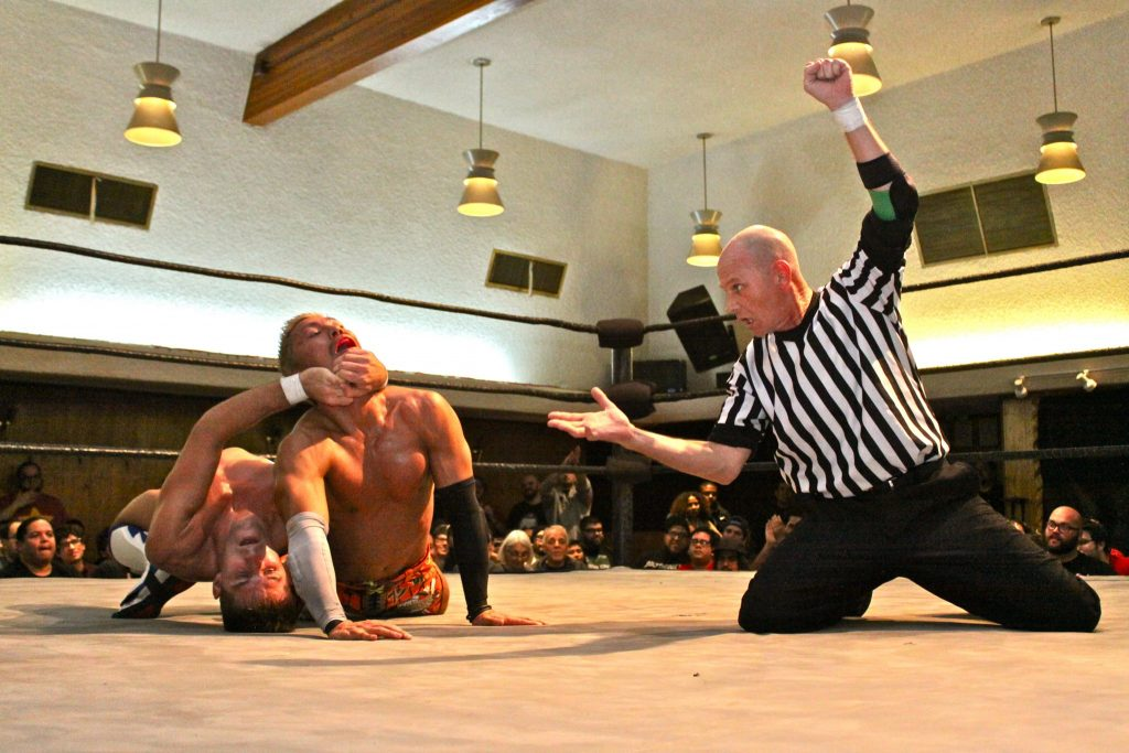 professional wrestling Professional wrestling holds include a number of set moves and pins used by performers to immobilize their opponents or lead to a submission.