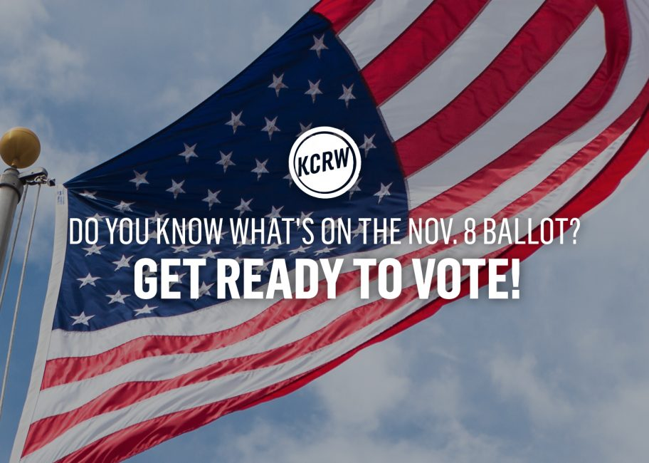 Voters guide to the 2016 presidential election