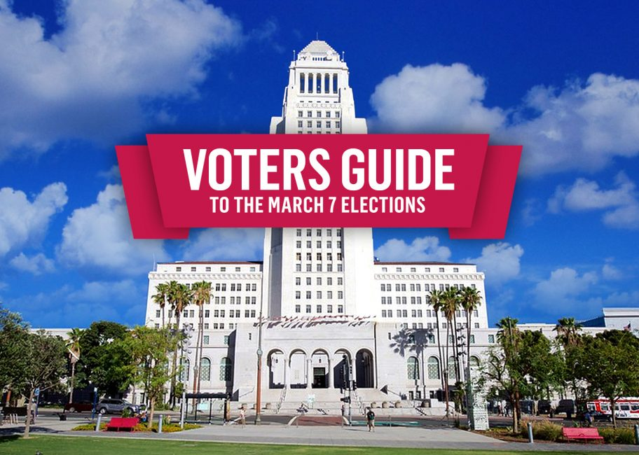 Voters Guide to the March 7 Election