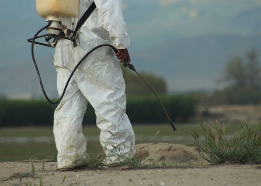 Ties between Monsanto and EPA raise questions about safety and regulation