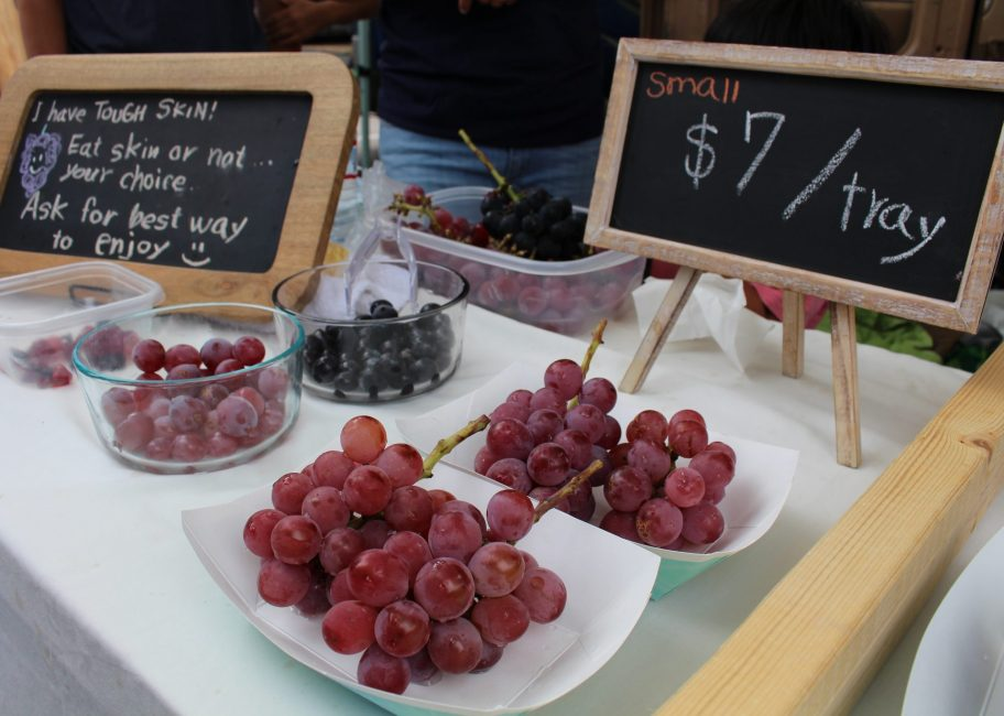 Taste some Japanese grapes growing in Ventura